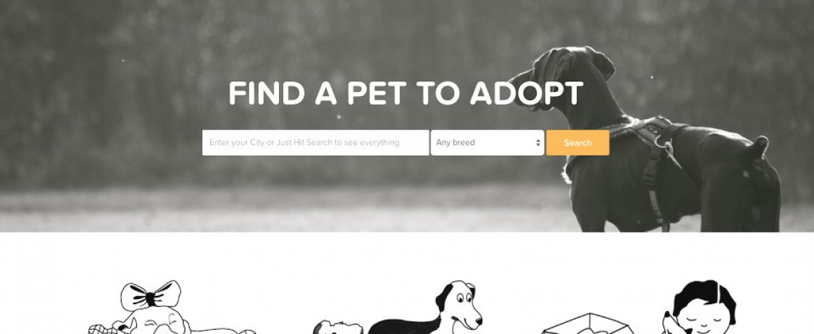 Petdom – India's First Pet Adoption Platform
