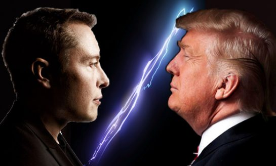 Twitter Argument Between Elon Musk and Donald Trump