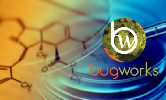 Bugworks Research Secures $9 million in Series A Funding
