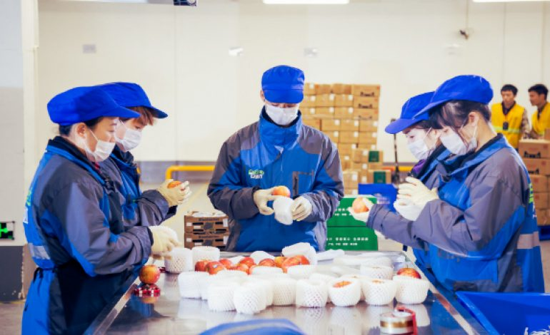 China's Yiguo Group Launches Order-based Tracking System